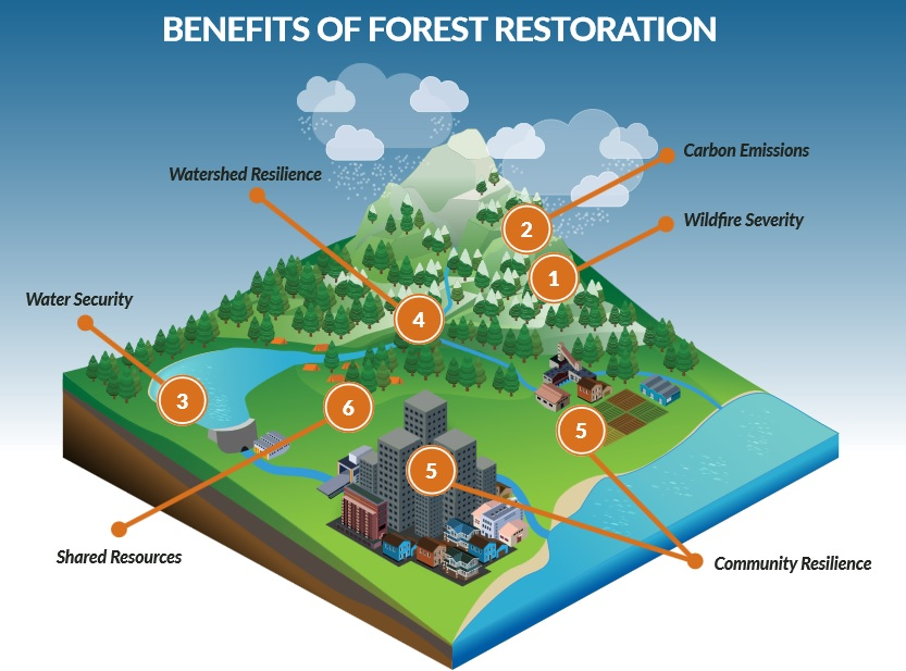 Forest Resilience Bond benefit diagram