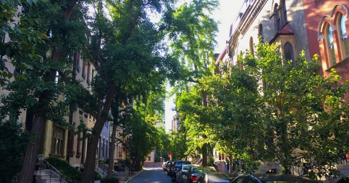 How Green Infrastructure Yields Urban Safety and Health