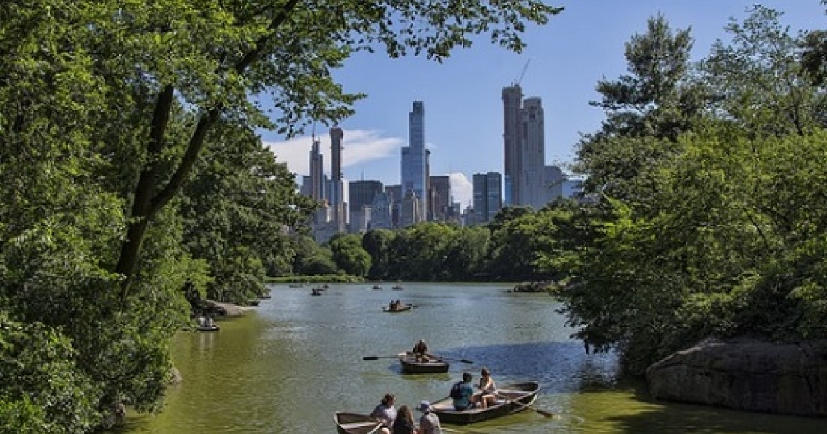 Tapping into Public Health Dollars to Restore Urban Forests