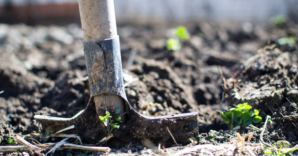 The State of Regenerative Agriculture: Growing With Room to Grow More