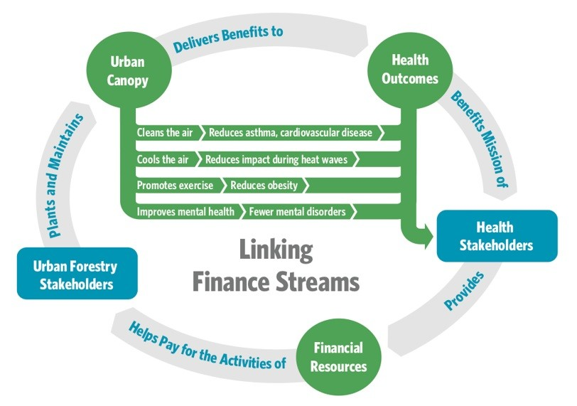 Schematic showing how urban forestry financing operates